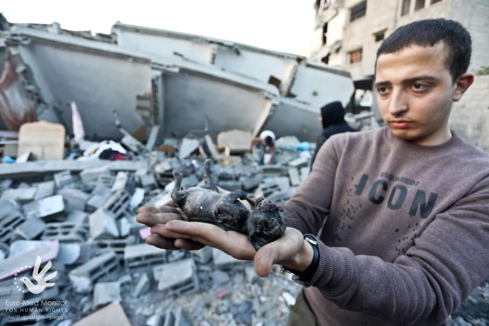The Euro-Med Calls on Israel to uphold its commitments under international law and for the opening of investigations on the killing of civilians