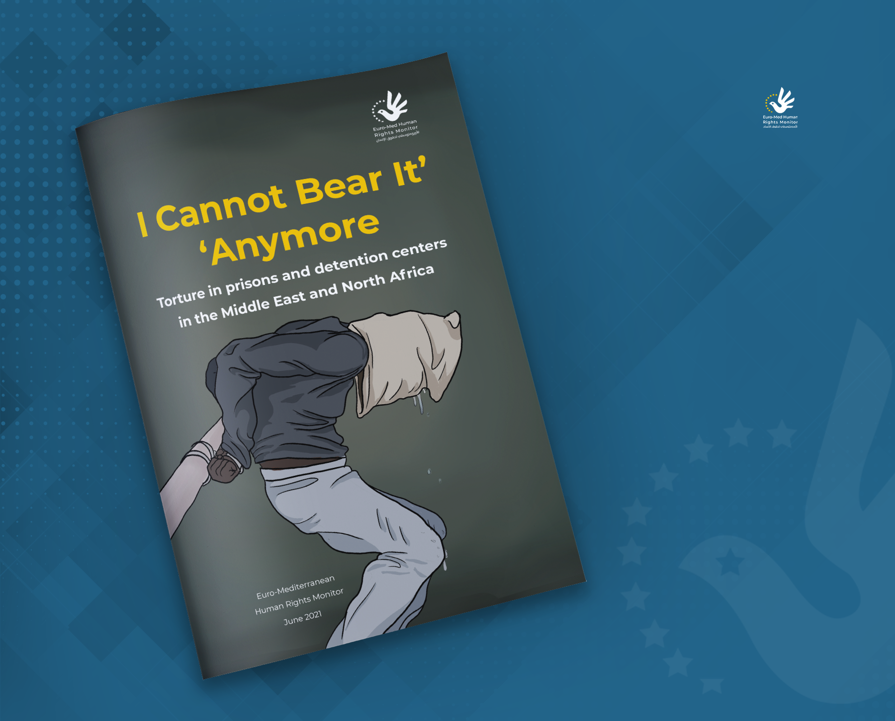 I Cannot Bear It Anymore: Torture in prisons and detention centers in the Middle East and North Africa