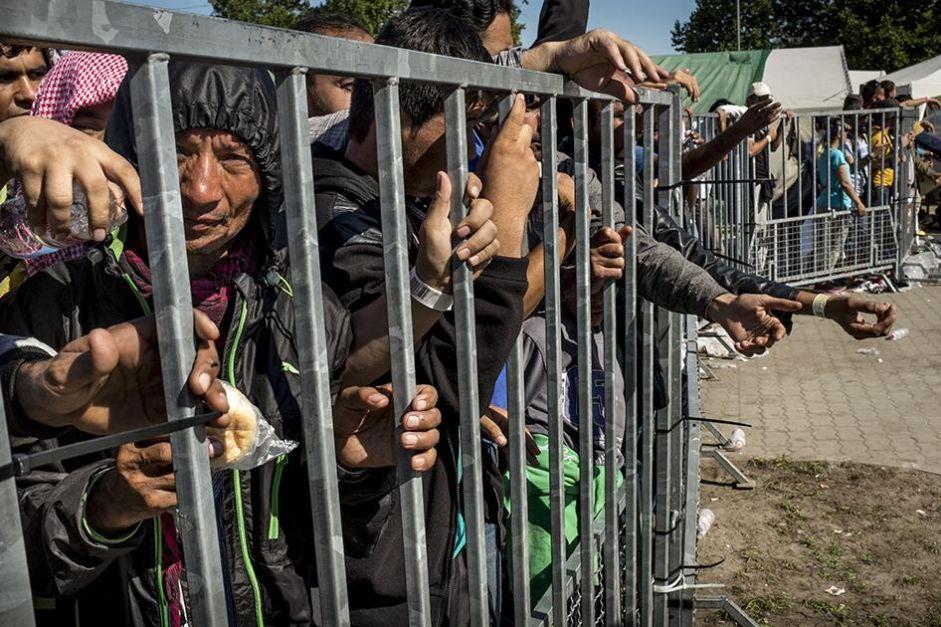 Fournir un véritable lieu de refuge aux déplacés du monde entier