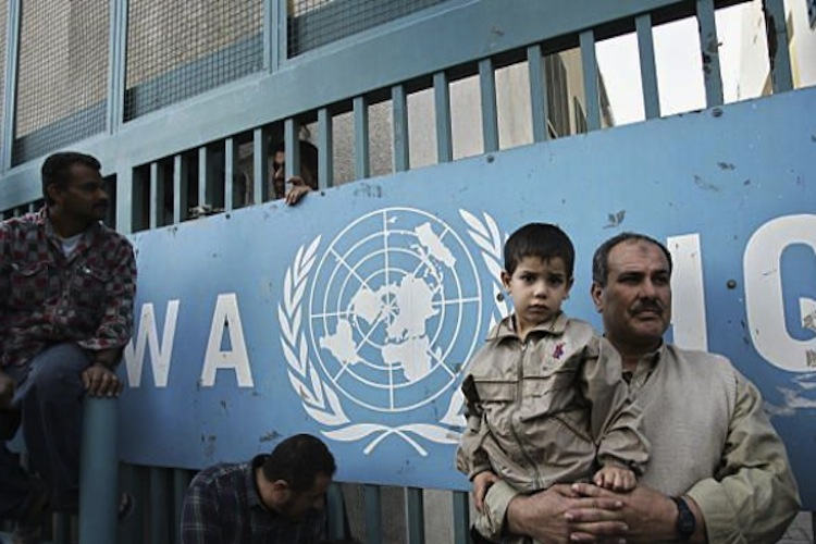 Switzerland and the Netherlands suspend UNRWA funding, undermining Palestinian refugees' rights