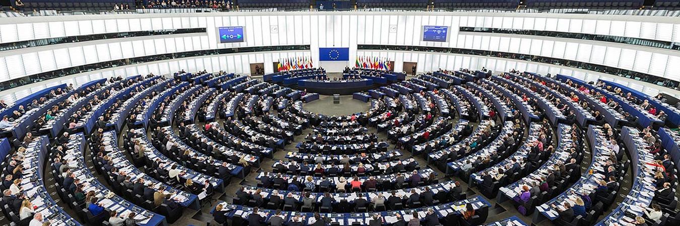 Euro-Med Monitor welcomes MEPs' letter against Israel's 'de facto annexation'